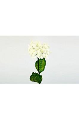 Hortensie WHITE 70cm, preturi, ieftine