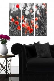 Tablou decorativ (set 3 piese) Bianca 553BNC3332 multicolor