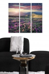 Tablou decorativ (set 3 piese) Bianca 553BNC3514 multicolor