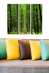 Tablou decorativ (set 3 piese) Bianca 553BNC3619 multicolor