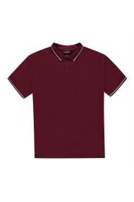 Tricou Polo Pierre Cardin 54015209 Bordo