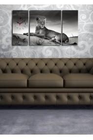 Ceas decorativ de perete(3 articole) Clock Art 228CLA3632 Multicolor