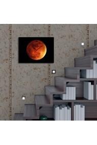 Ceas decorativ de perete Clockity ASR-248CTY1603 Multicolor