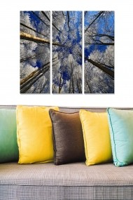 Tablou decorativ (set 3 piese) Bianca 553BNC1138 multicolor