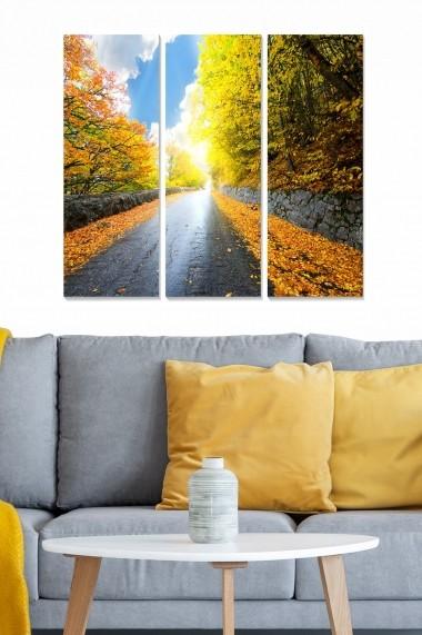 Tablou decorativ (set 3 piese) Bianca 553BNC1186 multicolor