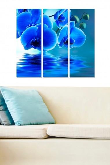 Tablou decorativ (set 3 piese) Bianca 553BNC2204 multicolor