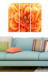 Tablou decorativ (set 3 piese) Bianca 553BNC2277 multicolor