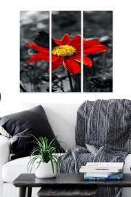 Tablou decorativ (set 3 piese) Bianca 553BNC2447 multicolor