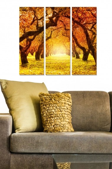 Tablou decorativ (set 3 piese) Bianca 553BNC2663 multicolor