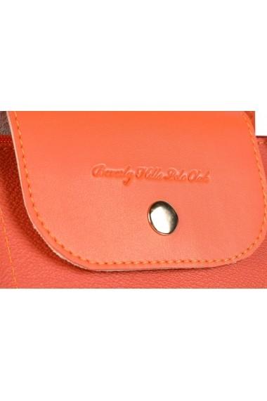 Geanta Beverly Hills Polo Club 668BHP0138 portocaliu