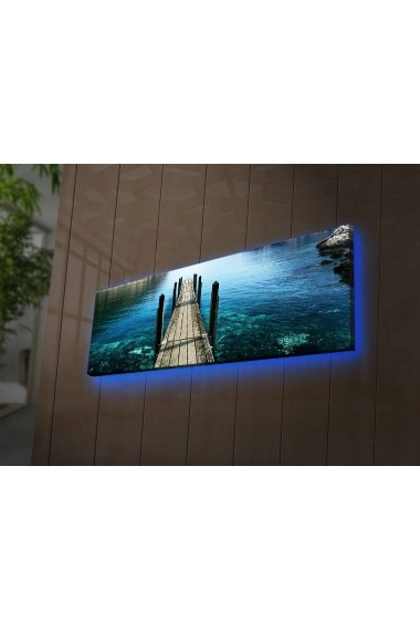 Tablou din panza, cu lumina LED Shining ASR-239SHN3269 Multicolor