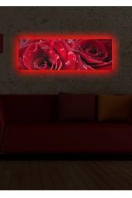 Tablou din panza, cu lumina LED Shining ASR-239SHN1259 Multicolor