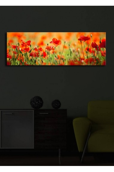 Tablou din panza, cu lumina LED Shining ASR-239SHN1213 Multicolor