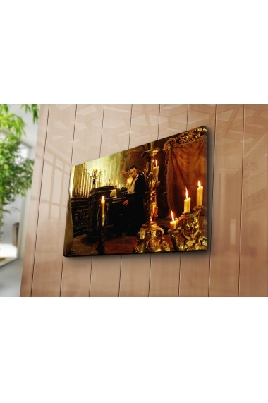 Tablou decorativ Canvart 249CVT1365 multicolor