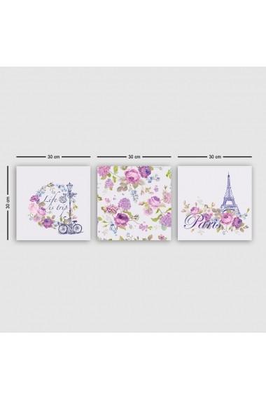 Tablou decorativ din panza (set 3 bucati) Remy 564RMY1101 multicolor