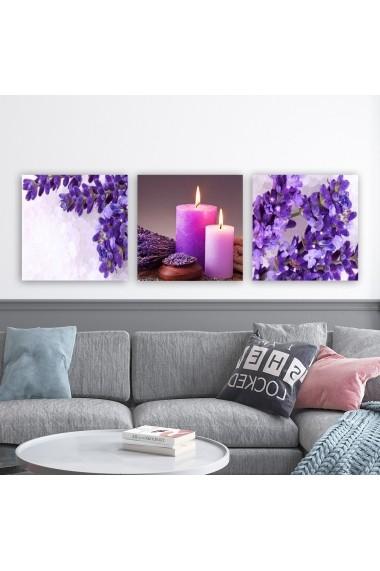 Tablou decorativ din panza (set 3 bucati) Remy 564RMY1133 multicolor