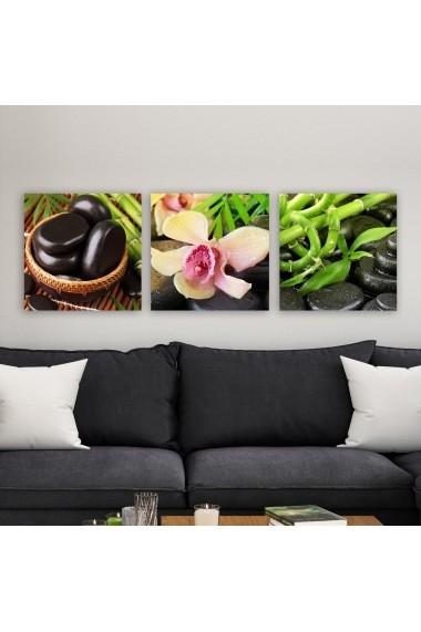 Tablou decorativ din panza (set 3 bucati) Remy 564RMY1134 multicolor