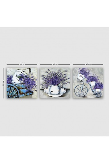Tablou decorativ din panza (set 3 bucati) Remy 564RMY1168 multicolor