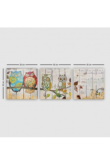 Tablou decorativ din panza (set 3 bucati) Remy 564RMY1189 multicolor