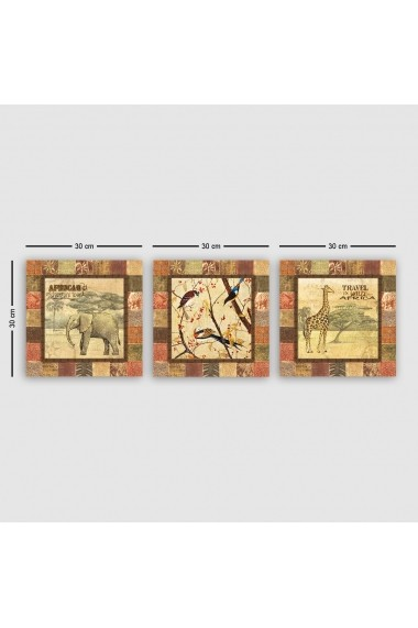 Tablou decorativ din panza (set 3 bucati) Remy 564RMY1195 multicolor