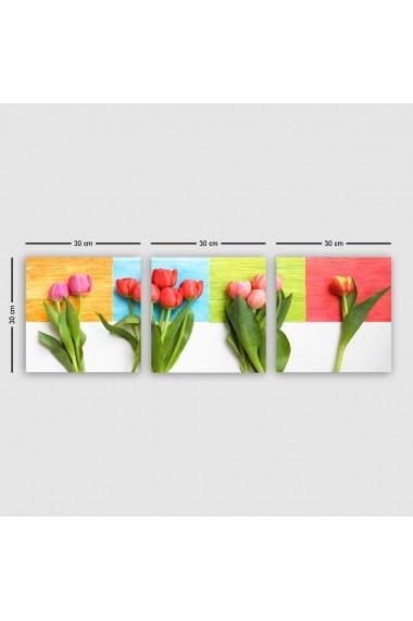 Tablou decorativ din panza (set 3 bucati) Remy 564RMY1212 multicolor