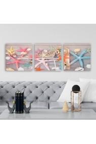 Tablou decorativ din panza (set 3 bucati) Remy 564RMY1215 multicolor