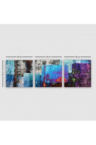 Tablou decorativ din panza (set 3 bucati) Remy 564RMY1216 multicolor