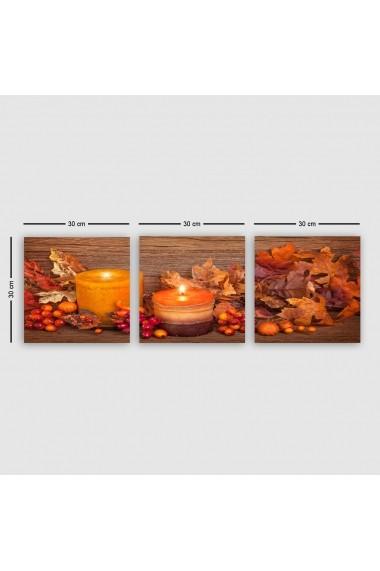 Tablou decorativ din panza (set 3 bucati) Remy 564RMY1225 multicolor