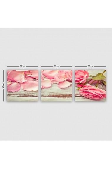 Tablou decorativ din panza (set 3 bucati) Remy 564RMY1236 multicolor