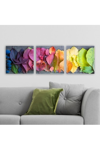 Tablou decorativ din panza (set 3 bucati) Remy 564RMY1249 multicolor