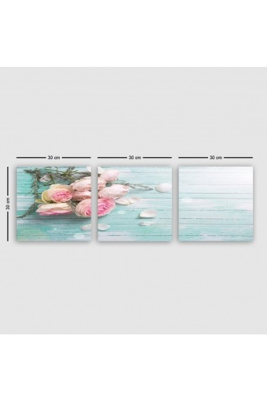 Tablou decorativ din panza (set 3 bucati) Remy 564RMY1267 multicolor