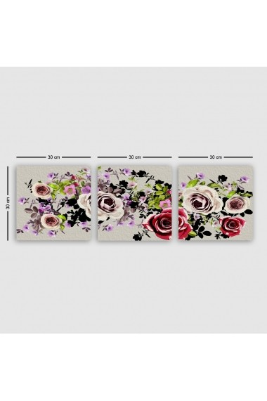 Tablou decorativ din panza (set 3 bucati) Remy 564RMY1272 multicolor