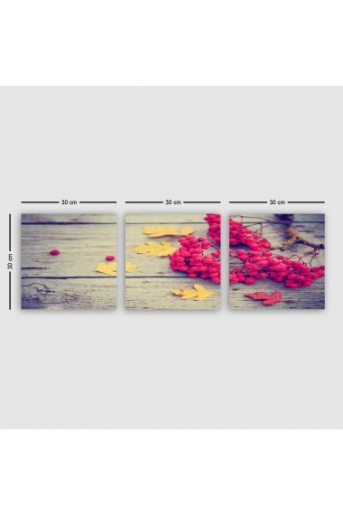 Tablou decorativ din panza (set 3 bucati) Remy 564RMY1273 multicolor