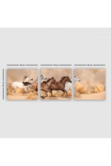Tablou decorativ din panza (set 3 bucati) Remy 564RMY1277 multicolor