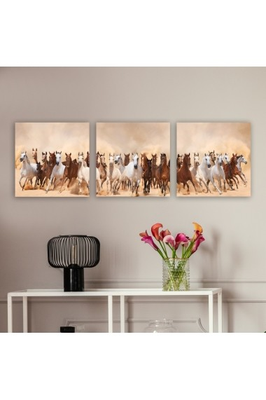 Tablou decorativ din panza (set 3 bucati) Remy 564RMY1278 multicolor