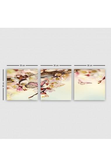 Tablou decorativ din panza (set 3 bucati) Remy 564RMY1290 multicolor