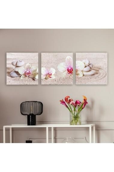 Tablou decorativ din panza (set 3 bucati) Remy 564RMY1295 multicolor