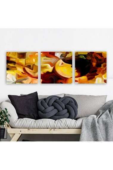 Tablou decorativ din panza (set 3 bucati) Remy 564RMY1310 multicolor
