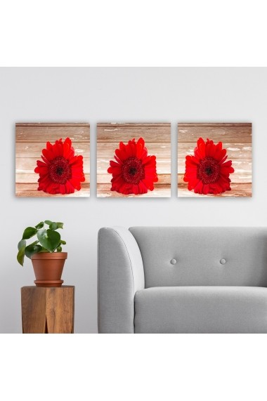 Tablou decorativ din panza (set 3 bucati) Remy 564RMY1311 multicolor