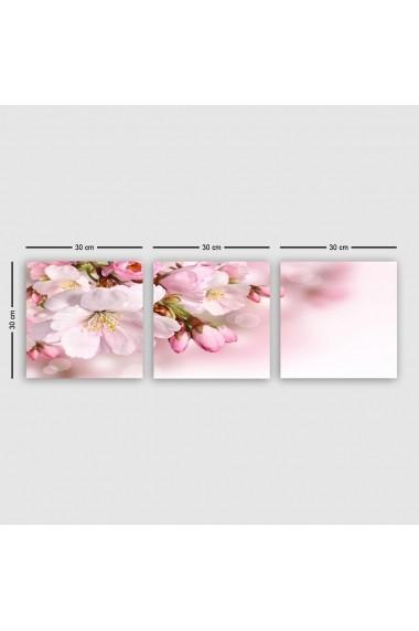 Tablou decorativ din panza (set 3 bucati) Remy 564RMY1318 multicolor