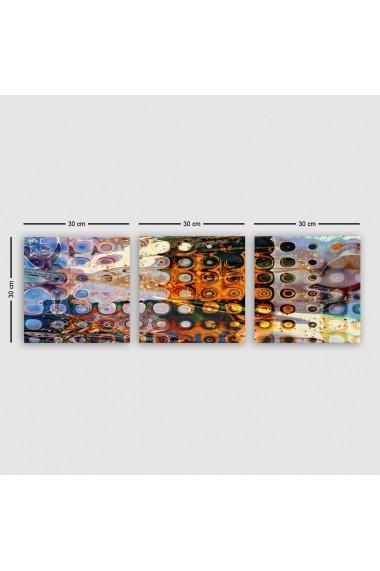 Tablou decorativ din panza (set 3 bucati) Remy 564RMY1326 multicolor