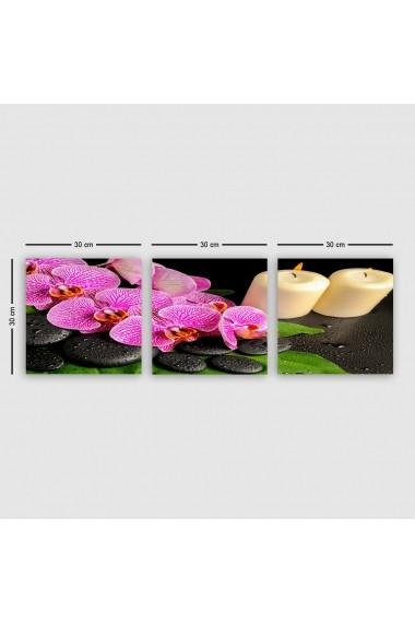 Tablou decorativ din panza (set 3 bucati) Remy 564RMY1336 multicolor