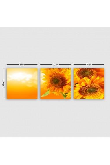 Tablou decorativ din panza (set 3 bucati) Remy 564RMY1338 multicolor
