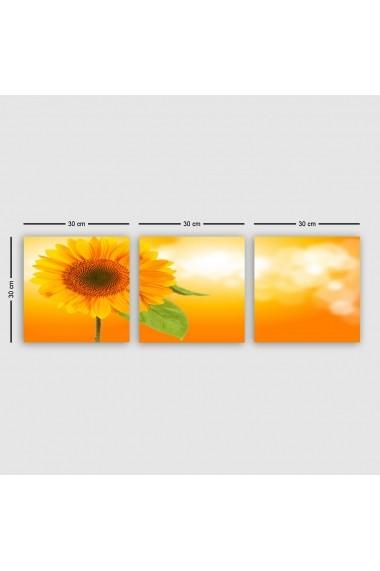 Tablou decorativ din panza (set 3 bucati) Remy 564RMY1339 multicolor