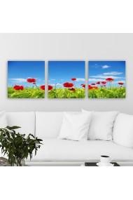 Tablou decorativ din panza (set 3 bucati) Remy 564RMY1341 multicolor