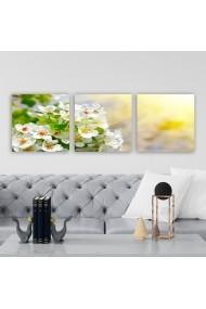 Tablou decorativ din panza (set 3 bucati) Remy 564RMY1347 multicolor