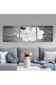 Tablou decorativ din panza (set 3 bucati) Remy 564RMY1354 multicolor