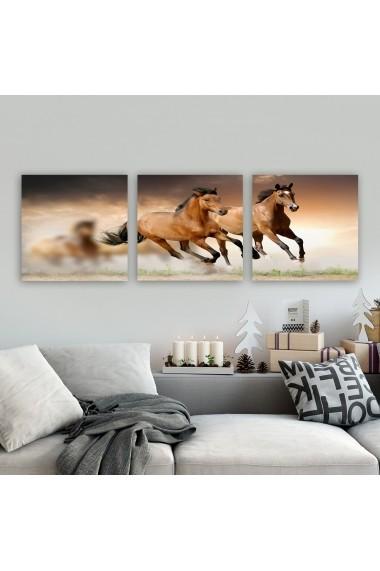 Tablou decorativ din panza (set 3 bucati) Remy 564RMY1356 multicolor