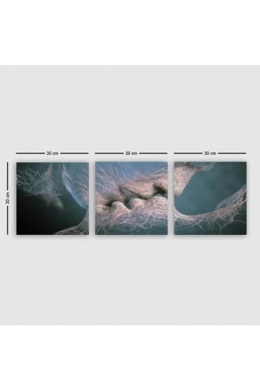 Tablou decorativ din panza (set 3 bucati) Remy 564RMY1365 multicolor