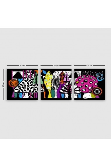 Tablou decorativ din panza (set 3 bucati) Remy 564RMY1395 multicolor